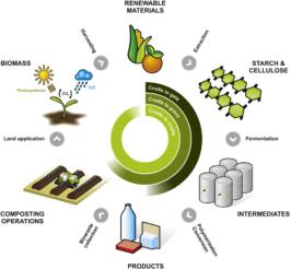 Figura 1. Ciclo de vida de los polímeros biodegradables.