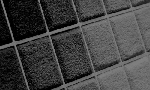 ecorug-blackwhite-1170x780
